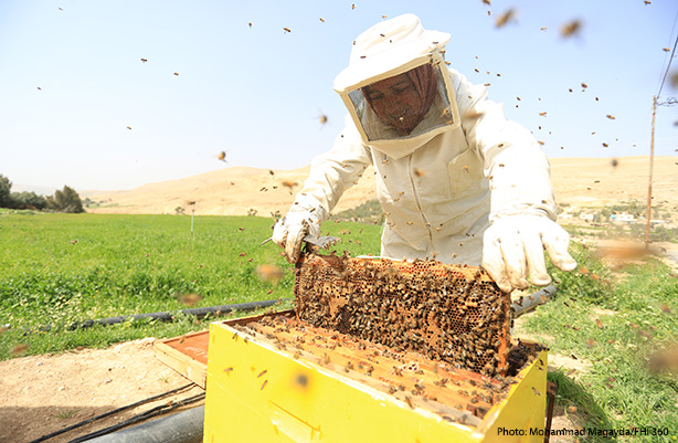 beekeeper in field