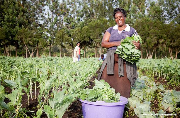 women picking vegetables
