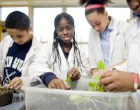 students in science class working with plants
