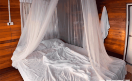 mosquito bed net